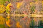 Abbott Lake at peak fall color