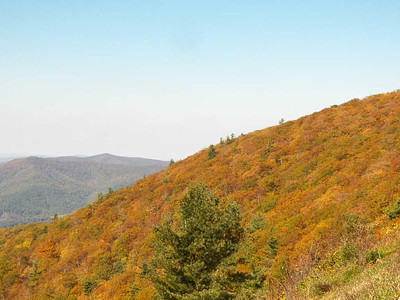 fall colors, Stony Man overlook