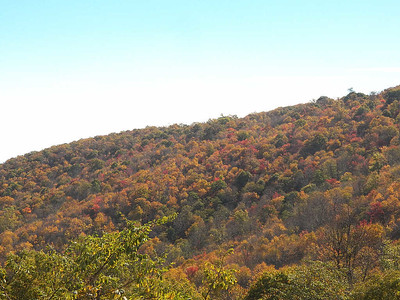 colorful trees seen from Jenkins Gap Overlook, Skyline Drive, Shenandoah National Park, October 16, 2015