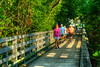 People enjoy an early morning walk at the trail head of the Virginia Creeper Trail in Abingdon, VA on Saturday, July 28, 2012. Copyright 2012 Jason Barnette