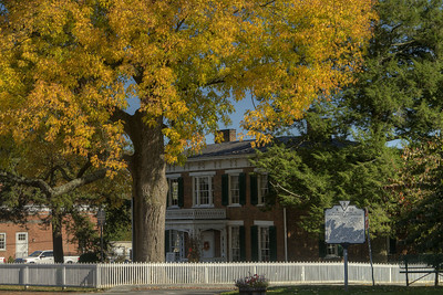 A brilliant tree standing over the Fields-Penn 1860 House Museum in Abingdon, VA on Friday, October 17, 2014. Copyright 2014 Jason Barnette