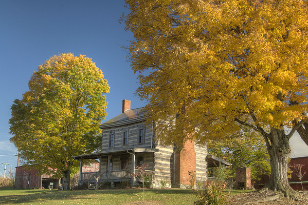 Beautiful fall trees surround the Fairview Cabin on Hillman Highway in Abingdon, VA on Monday, October 27, 2014. Copyright 2014 Jason Barnette