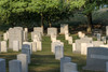 A collection of various types of grave markers at Arlington National Cemetery in Arlington, VA on Monday, August 17, 2015. Copyright 2015 Jason Barnette