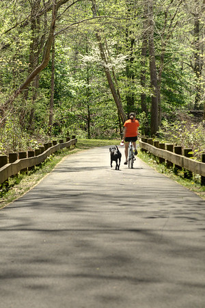 A woman rides a bicycle while her dog runs alongside on the Greenbelt Trail in Big Stone Gap, VA on Thursday, April 24, 2014. Copyright 2014 Jason Barnette