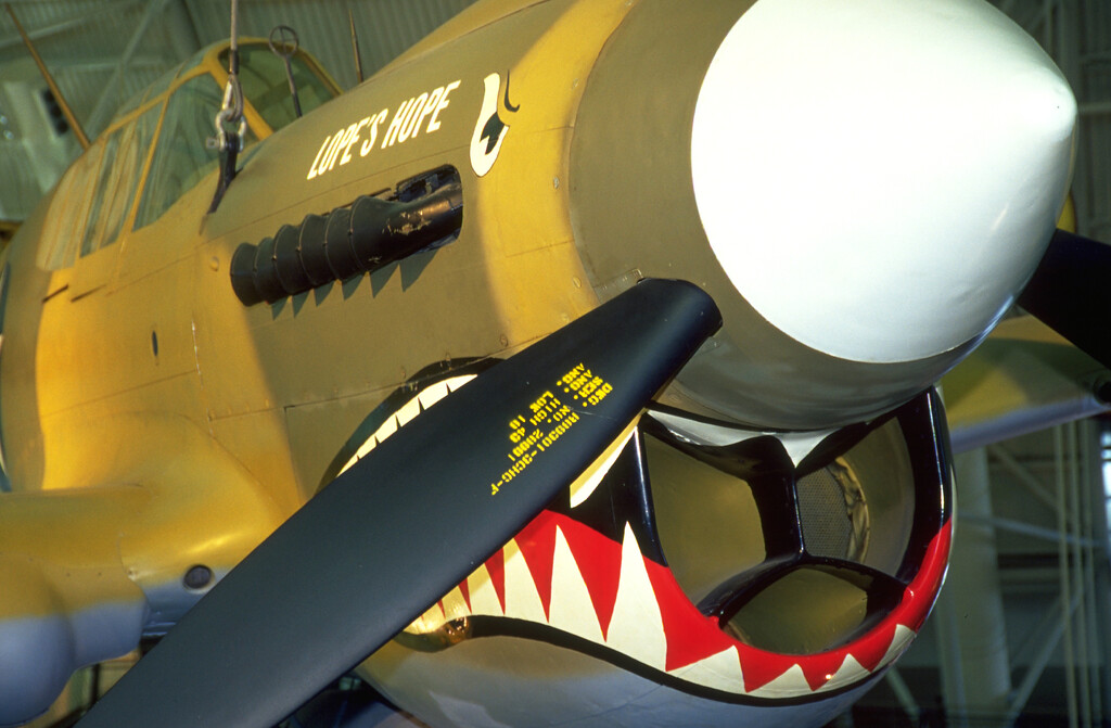 lope's hope p-41 warhawk