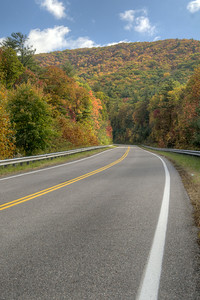 Fall colors decorate Whitetop Road near Chilhowie, VA on Sunday, October 19, 2014. Copyright 2014 Jason Barnette