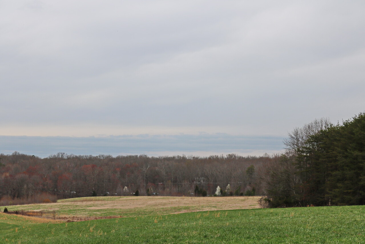 Mclaw's Trail 7