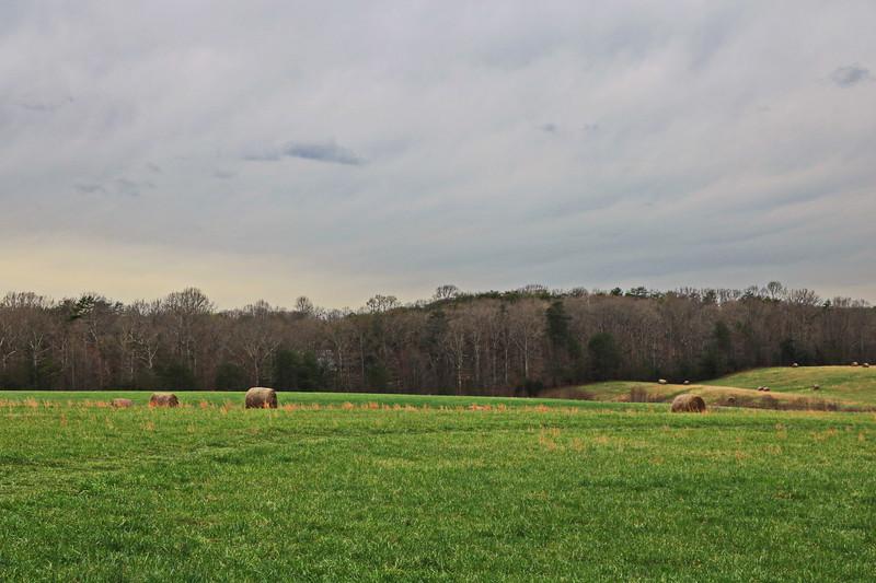 McLaw's Trail 2