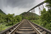 The Copper River Viaduct, built in 1908 for the CC&O Raildroad, is now used by CSX and stands 187 feet above the valley floor near Clinchport, VA on Tuesday, July 30, 2013. Copyright 2013 Jason Barnette