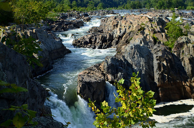 Great Falls, VA
