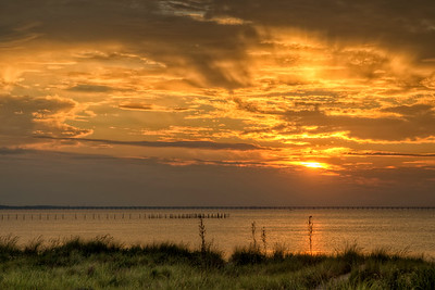 A warm sunset near the beach at First Landing State Park in Virginia Beach, VA on Wednesday, August 19, 2015. Copyright 2015 Jason Barnette
