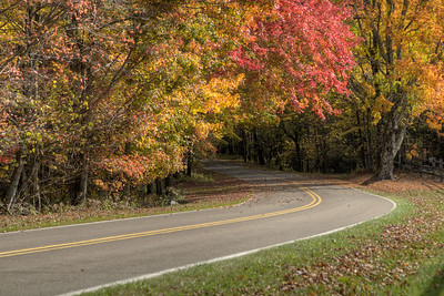 A few fall colors along the road leading to the Homestead Area at Grayson Highlands State Park in Mouth of Wilson, VA on Tuesday, October 15, 2013. Copyright 2013 Jason BarnetteA few fall colors along the road leading to the Homestead Area at Grayson Highlands State Park in Mouth of Wilson, VA on Tuesday, October 15, 2013. Copyright 2013 Jason Barnette  The Homestead Area at Grayson Highlands State Park features several rustic buildings that were once part of a frontier homestead, a few picnic shelters, several picnic areas, and a stage for performances throughout the year.