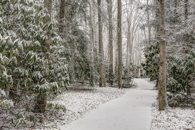 Snow covers the walking paths at Hungry Mother State Park in Marion, VA on Tuesday, January 21, 2014. Copyright 2014 Jason Barnette