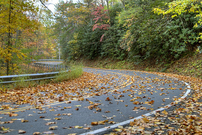 Leaves cover the road along Route 16 near Marion, VA on Wednesday, October 23, 2013. Copyright 2013 Jason Barnette  The 30-mile section of Route 16 from Marion to Tazewell, Virginia, is know as The Back of the Dragon. The name comes from motorcycle enthusiasts who enjoy riding across the mountain ranges between the two country towns in Southwest Virginia. The route offers a beautiful scenic drive, amazing overlooks, and stunning nature shots.