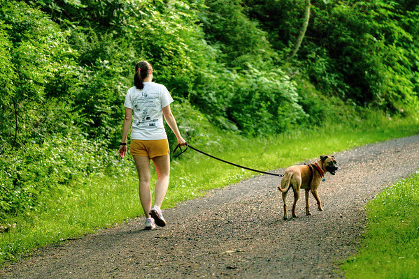 A woman takes a walk with her dog along New River Trail State Park in Galax, VA on Thursday, May 30, 2013. Copyright 2013 Jason Barnette