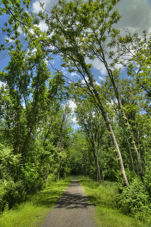 View of the trail at New River Trail State Park in Galax, VA on Friday, May 31, 2013. Copyright 2013 Jason Barnette
