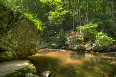 One of the many small ponds of water along the lower trail at Cascade Falls Recreation Area in Pembroke, VA on Wednesday, July 30, 2014. Copyright 2014 Jason Barnette  Cascade Falls is a 66' waterfall location at the end of a 4-mile loop hiking trail through fairly rough terrain in a dense forest. It is managed by the National Forest Service and the recreation area includes a paved parking lot (day-use only, fee required), a picnic area, and a restroom facility.