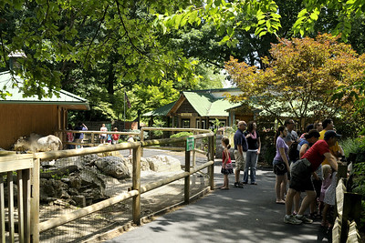 People wander along the trail at the Mill Mountain Zoo at Mill Mountain Park in Roanoke, VA on Friday, July 4, 2014. Copyright 2014 Jason Barnette