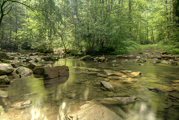 A cold mountain stream winds through Raccoon Branch Campground on Highway 16 in Sugar Grove, VA on Friday, June 13, 2014. Copyright 2014 Jason Barnette