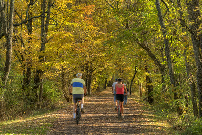 People ride bicycles under beautiful fall colors on the Virginia Creeper Trail in Abingdon, VA on Monday, October 27, 2014. Copyright 2014 Jason Barnette