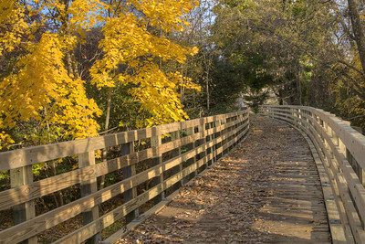 Vibrant fall colors along a trestle on the Virginia Creeper Trail, a 34-mile bicycling, jogging, and walking trail along an old railroad line from Abingdon through Damascus to White Top Mountain, in Damascus, VA on Saturday, November 2, 2013. Copyright 2013 Jason Barnette