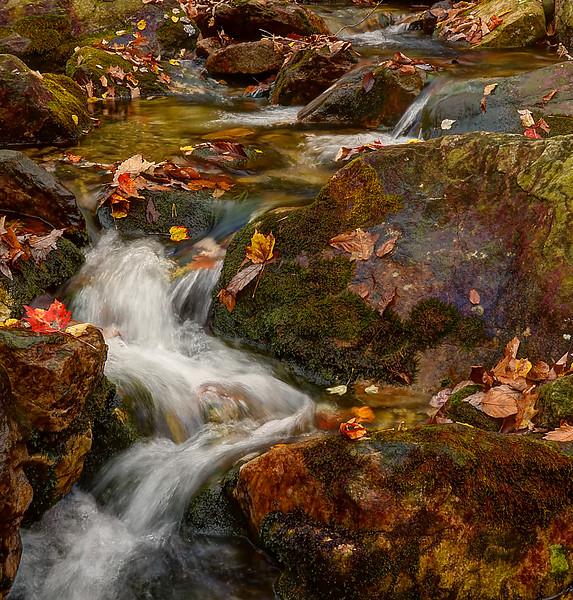 Rip Rap Falls, Virginia