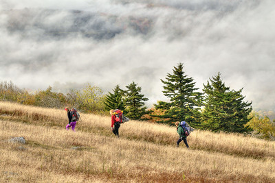 A trio of backpackers walk along the Appalachian Trail on Whitetop Mountain, the highest place in Virginia you can drive and the second highest mountain in the state, in Wilson Creek, VA on Tuesday, October 15, 2013. Copyright 2013 Jason Barnette