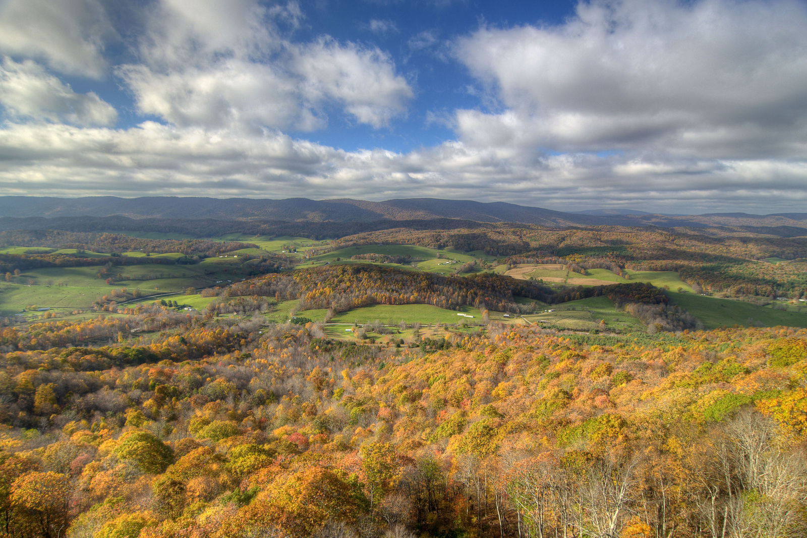 Rich fall colors seen from the top of the top of the 100 foot observation tower at the Big Walker Lookout in Wytheville, VA on Thursday, October 23, 2014. Copyright 2014 Jason Barnette
