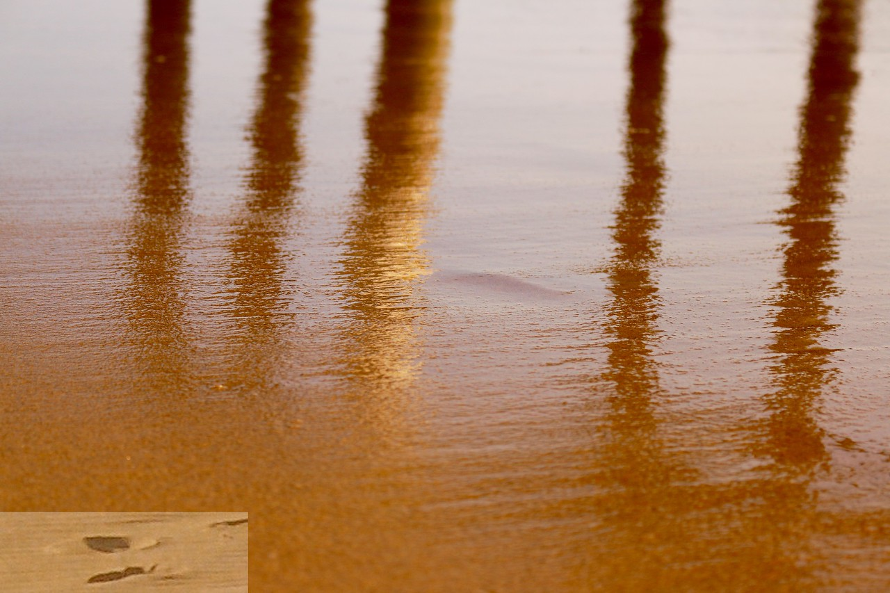 Sandbridge Pier Reflection