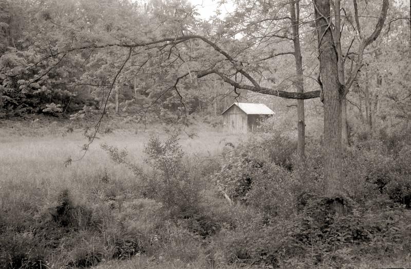 Donald Farm, Sulphur Springs Creek