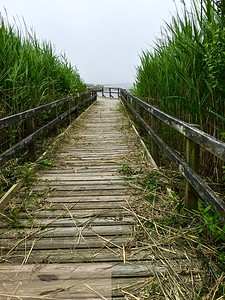 Back Bay Boardwalk