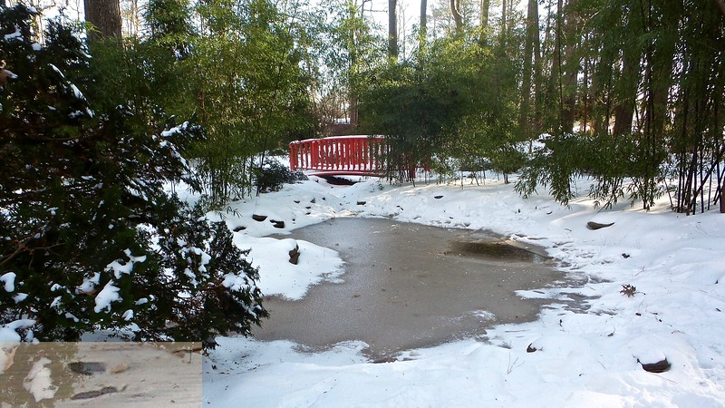 Japanese Garden Bridge in Winter