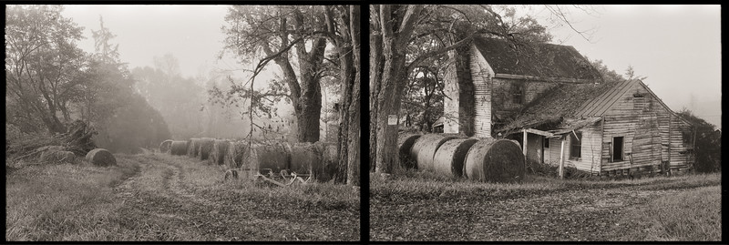 Blackie's House diptych