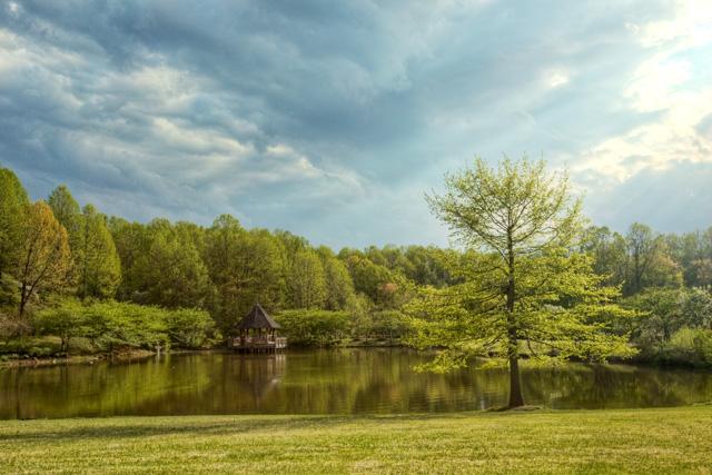 Meadowlark Garden