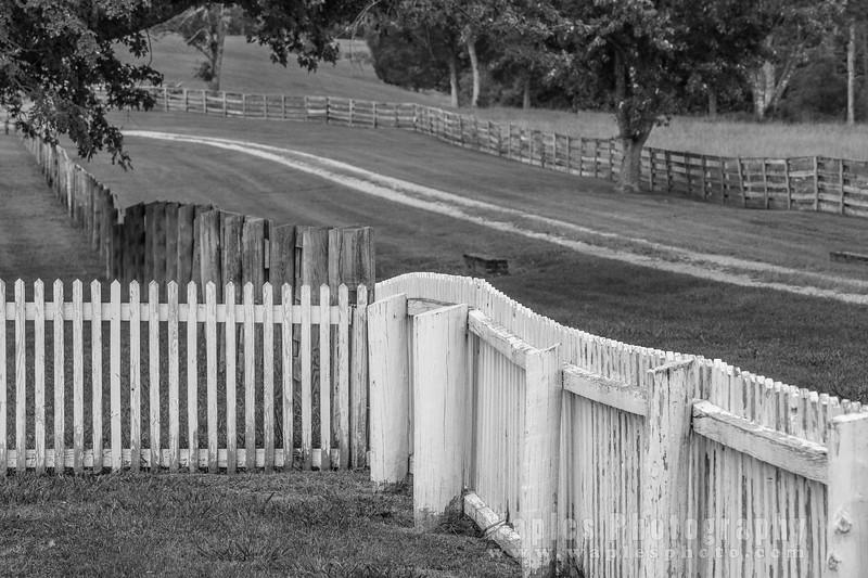 Fences in B&W