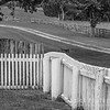 Fences in B&W