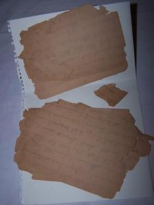 Family History Notes