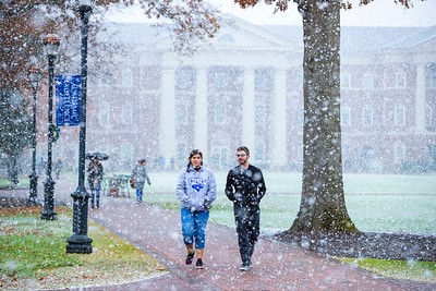 Snowfall on the Great Lawn