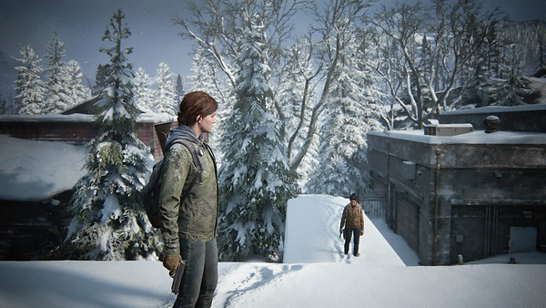 The Last of Us™ Part II_20200704135136