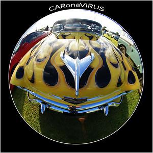 DSC00013 CARonaVIRUS