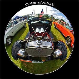 DSC00055 CARonaVIRUS