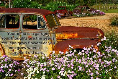 Garden of Cars