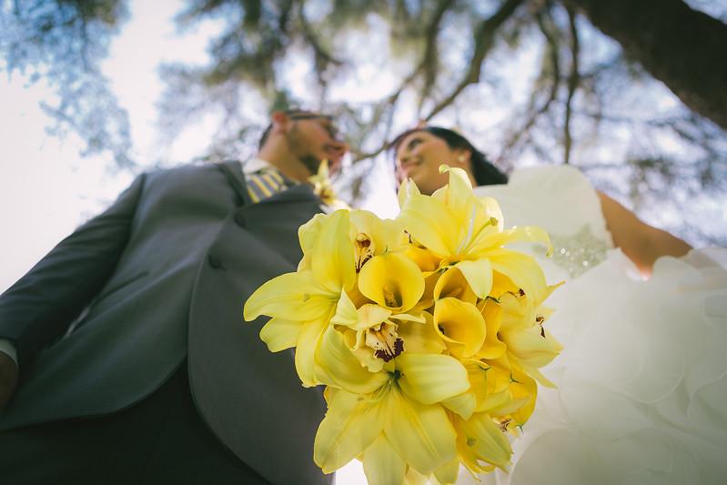 Oscar and Erica Wedding