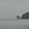 Brume sur le lac...