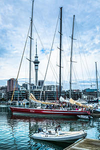 Steinlager at the Viaduct Basin - Auckland