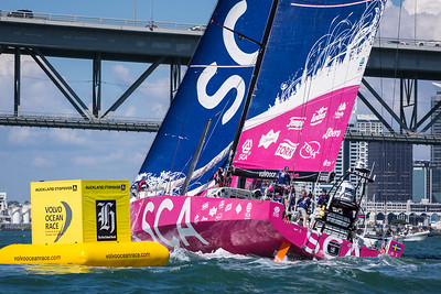 THE NZ HERALD IN-PORT RACE