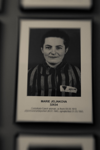 A naive smile, perhaps hoping to believe what she was told.  Poles as well as Jews, Gypsies,  Russians, and Homosexuals.
