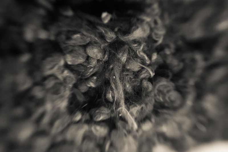 Heads were shaved to delouse the inmates. Hair was saved to be used in fabrics and cushioning. When Auschwitz was liberated seven tons of hair were found tightly packed into bails waiting for shipment. Nothing was wasted.