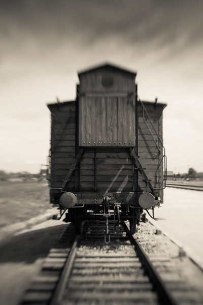 The conveyance. Locked inside, often for days, without food or water, room only to stand, stifling, stinking and death.