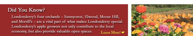 Visit Londonderry